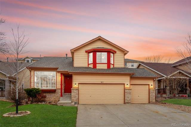 7877 Canvasback Circle, Littleton, CO 80125 (#5967290) :: The Gilbert Group