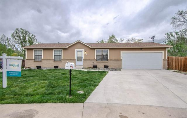 10972 W 104th Place, Westminster, CO 80021 (#5976440) :: House Hunters Colorado