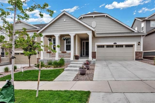 8499 Eldora Way, Arvada, CO 80007 (#5977019) :: Kimberly Austin Properties