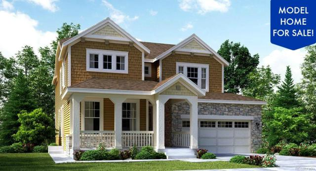 16064 Columbine Street, Thornton, CO 80602 (#5977207) :: Colorado Home Finder Realty