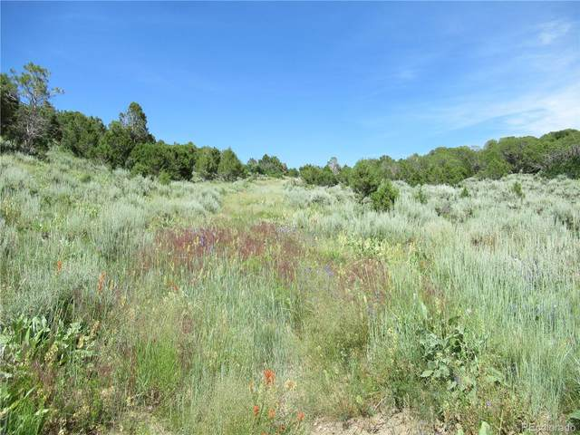 0000 County 140 Road, Gypsum, CO 81637 (MLS #5978792) :: 8z Real Estate