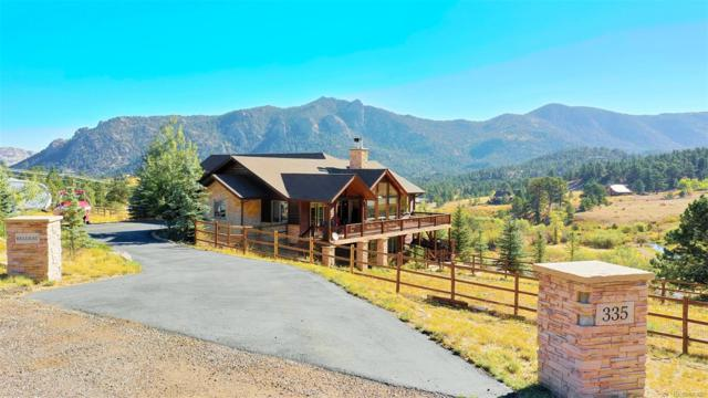 335 Saddleback Lane, Estes Park, CO 80517 (#5982466) :: Bring Home Denver with Keller Williams Downtown Realty LLC