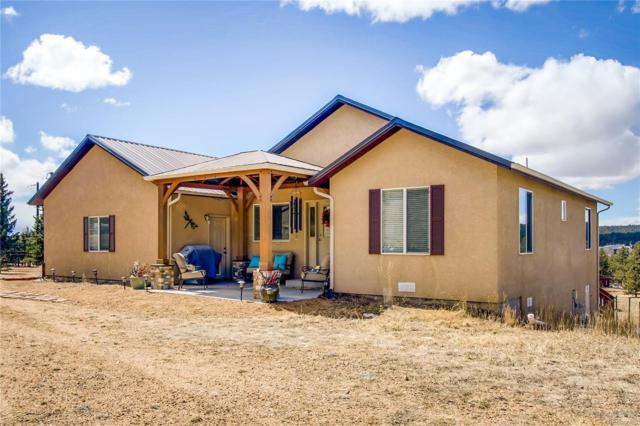 83 Cameron Circle, Florissant, CO 80816 (#5990194) :: Mile High Luxury Real Estate