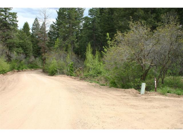 Hidden Valley Road, Sedalia, CO 80135 (MLS #5995485) :: 8z Real Estate