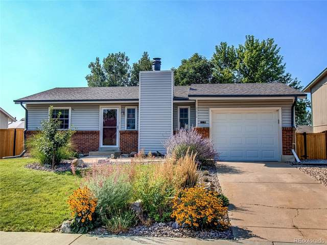 8654 W 86th Place, Arvada, CO 80005 (#6000998) :: Briggs American Properties