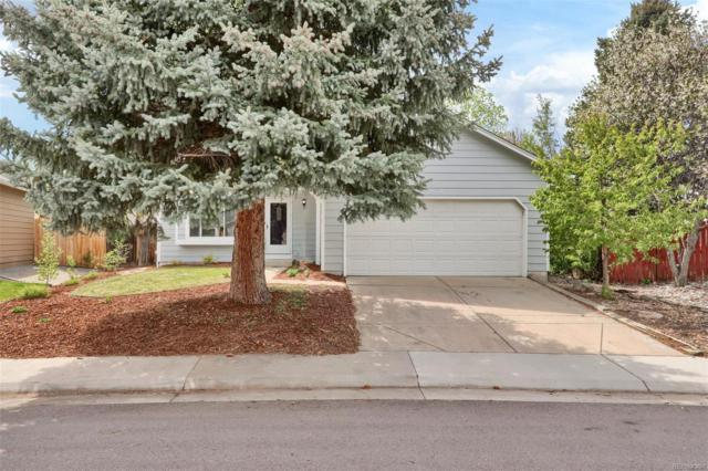 8621 W Star Circle, Littleton, CO 80128 (#6003569) :: The Heyl Group at Keller Williams