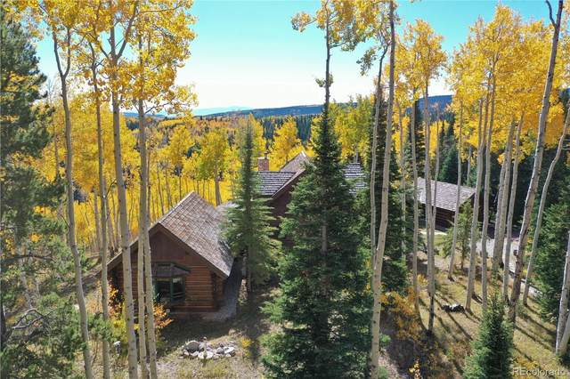 9355 Bearpaw Trail, Yampa, CO 80483 (#6003820) :: Mile High Luxury Real Estate