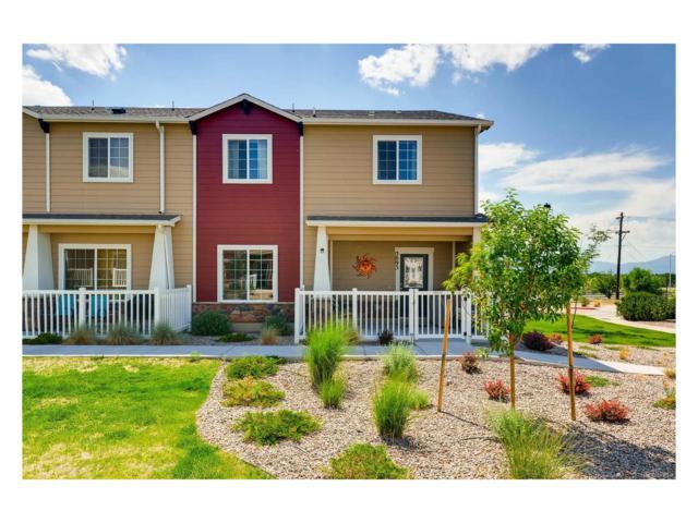3093 Wild Peregrine View, Colorado Springs, CO 80916 (#6007770) :: RE/MAX Professionals