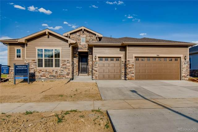 901 Limestone Drive, Erie, CO 80516 (#6009875) :: Berkshire Hathaway Elevated Living Real Estate