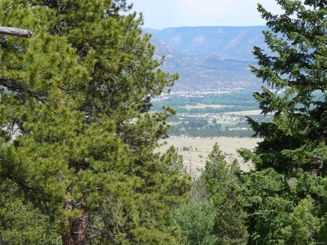 30176 Mountaintop Drive, Buena Vista, CO 81211 (#6010022) :: The DeGrood Team