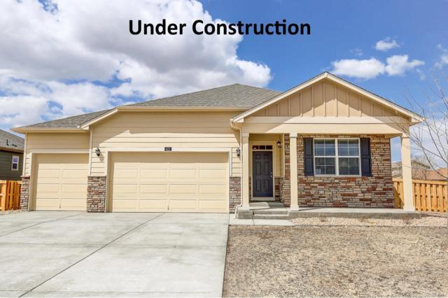 927 Charlton Drive, Windsor, CO 80550 (#6014961) :: Structure CO Group