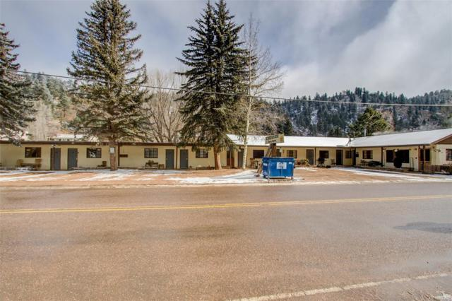 10370 Ute Pass Avenue, Green Mountain Falls, CO 80819 (#6015654) :: The Heyl Group at Keller Williams