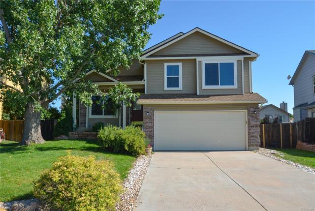 1358 S Canoe Creek Drive, Colorado Springs, CO 80906 (MLS #6018314) :: 8z Real Estate