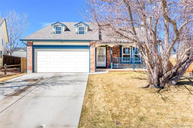 5941 S Quail Way, Littleton, CO 80127 (#6018557) :: Bring Home Denver with Keller Williams Downtown Realty LLC