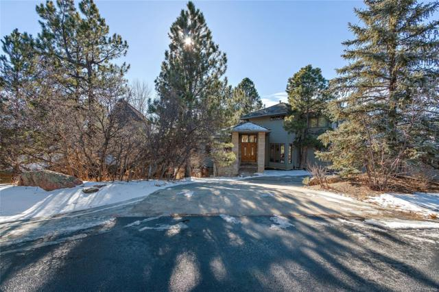 164 Glengarry Place, Castle Rock, CO 80108 (#6019288) :: The HomeSmiths Team - Keller Williams