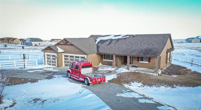 13605 Irish Hunter Trail, Elbert, CO 80106 (#6021228) :: Mile High Luxury Real Estate