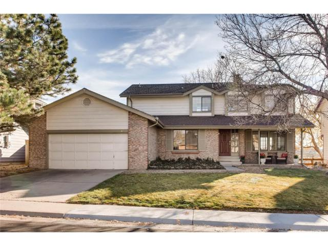 684 Old Stone Drive, Highlands Ranch, CO 80126 (#6022831) :: The Sold By Simmons Team