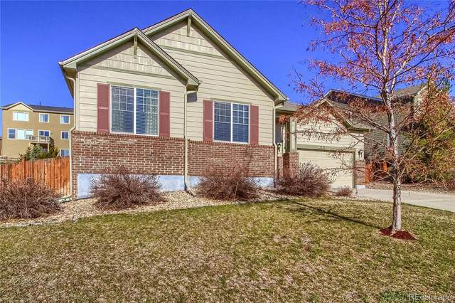 2333 Paint Pony Circle, Castle Rock, CO 80108 (#6023727) :: The Harling Team @ Homesmart Realty Group