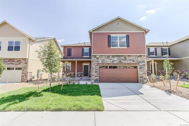 5960 Point Rider Circle, Castle Rock, CO 80104 (#6024165) :: The HomeSmiths Team - Keller Williams