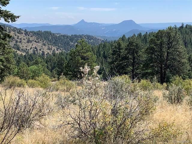 14704 Wetterhorn Peak Trail, Pine, CO 80470 (MLS #6026213) :: Bliss Realty Group