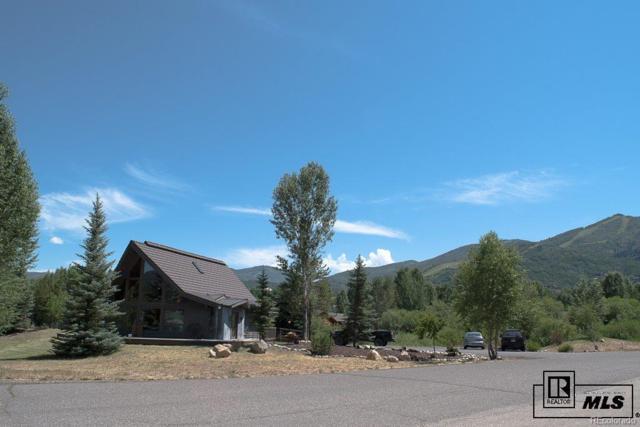 3150 Ingles Lane, Steamboat Springs, CO 80487 (#6032424) :: Mile High Luxury Real Estate