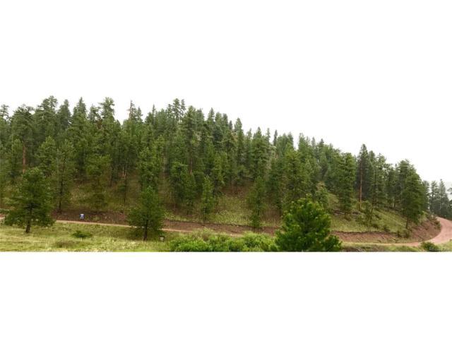 Lake Vie, Pine, CO 80470 (MLS #6033791) :: 8z Real Estate
