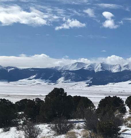 320 Nez Perce Trail, Westcliffe, CO 81252 (#6037324) :: RazrGroup