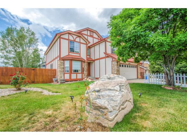 6510 Quarter Circle Road, Colorado Springs, CO 80922 (MLS #6037585) :: 8z Real Estate