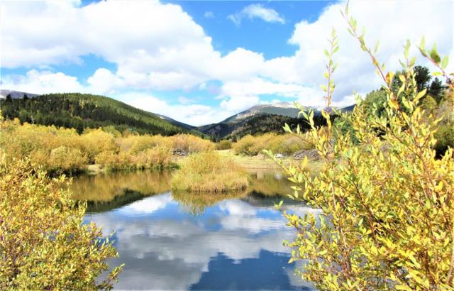 6648 County Road 43, Bailey, CO 80421 (#6040097) :: The City and Mountains Group