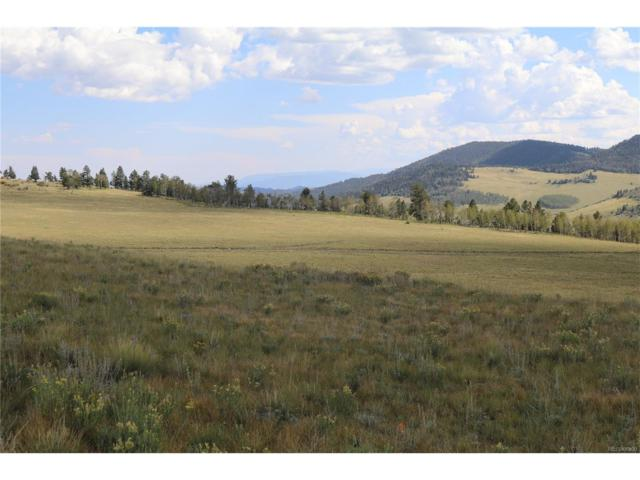 Aspen Meadows Lane, Guffey, CO 80820 (#6040340) :: Bring Home Denver