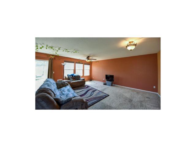 335 Smith Circle, Erie, CO 80516 (MLS #6041871) :: 8z Real Estate
