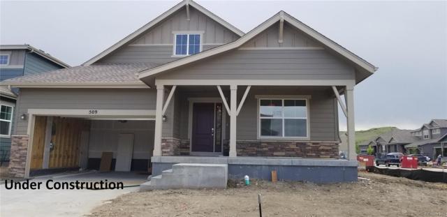 509 Seahorse Drive, Windsor, CO 80550 (MLS #6042223) :: 8z Real Estate