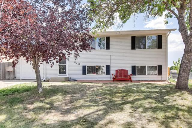 2240 Cleo Street, Denver, CO 80229 (#6042324) :: HomePopper