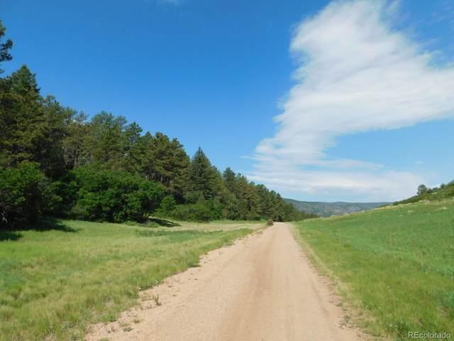 4518 Comanche Drive, Larkspur, CO 80118 (MLS #6042671) :: 8z Real Estate