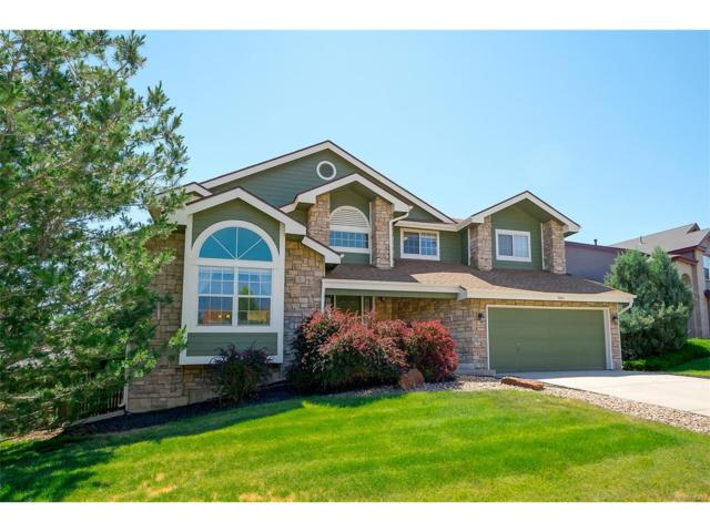 9866 Clairton Way, Highlands Ranch, CO 80126 (MLS #6045582) :: 8z Real Estate