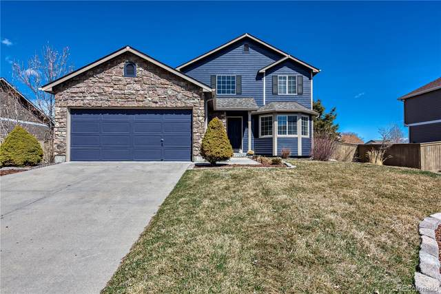 5053 Shelby Drive, Castle Rock, CO 80104 (#6048108) :: The HomeSmiths Team - Keller Williams