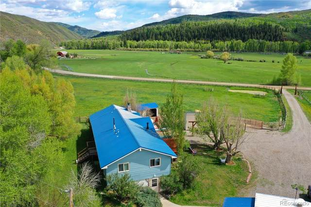 27320 County Road 52E, Steamboat Springs, CO 80477 (#6049850) :: Finch & Gable Real Estate Co.