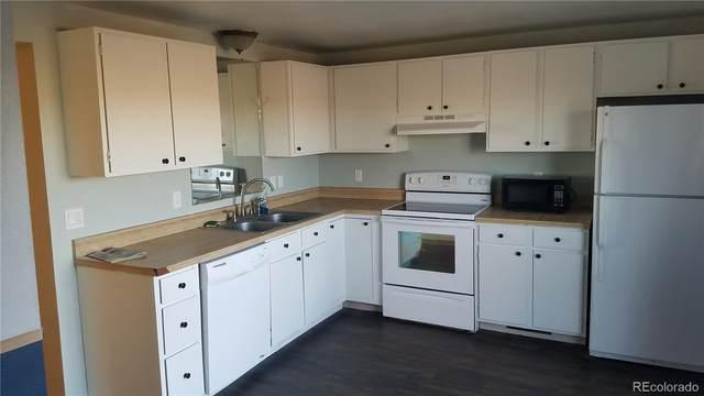 238 Harvest Drive, Hayden, CO 81639 (#6049859) :: Mile High Luxury Real Estate