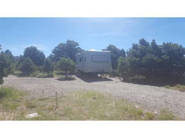19 W Mesa Drive, San Luis, CO 81152 (MLS #6050897) :: 8z Real Estate