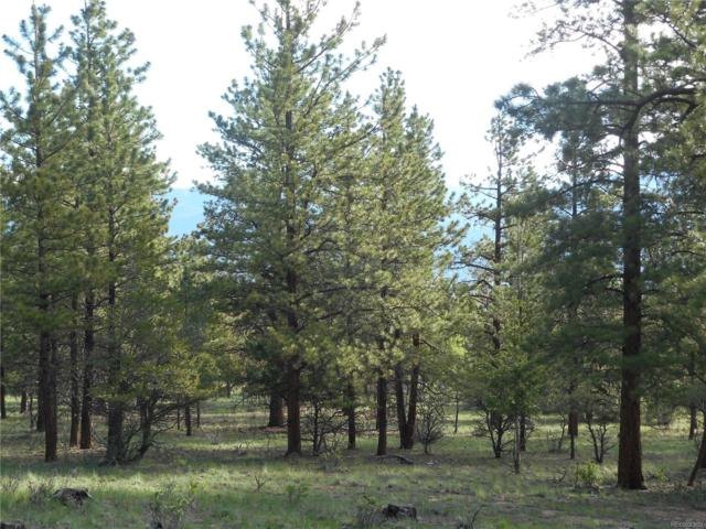 30267 San Isabel Road, Buena Vista, CO 81211 (MLS #6051987) :: 8z Real Estate