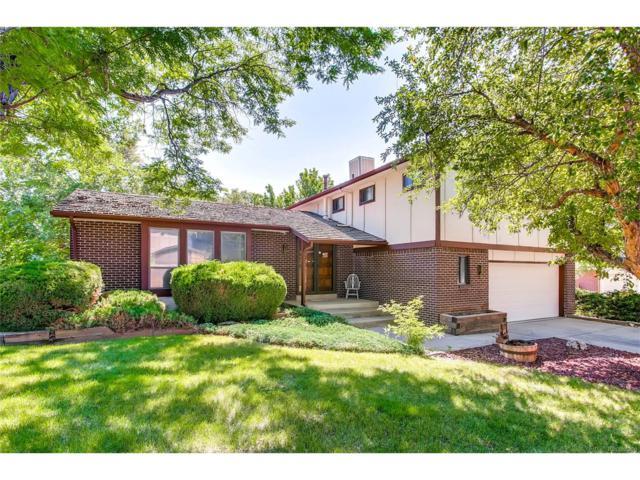7560 S Reed Court, Littleton, CO 80128 (MLS #6054258) :: 8z Real Estate