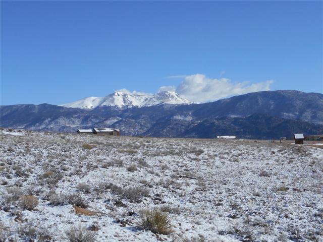 30687 Valley View Drive, Buena Vista, CO 81211 (MLS #6054928) :: 8z Real Estate