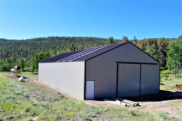 229 Firebox Road, Canon City, CO 81212 (MLS #6057601) :: 8z Real Estate