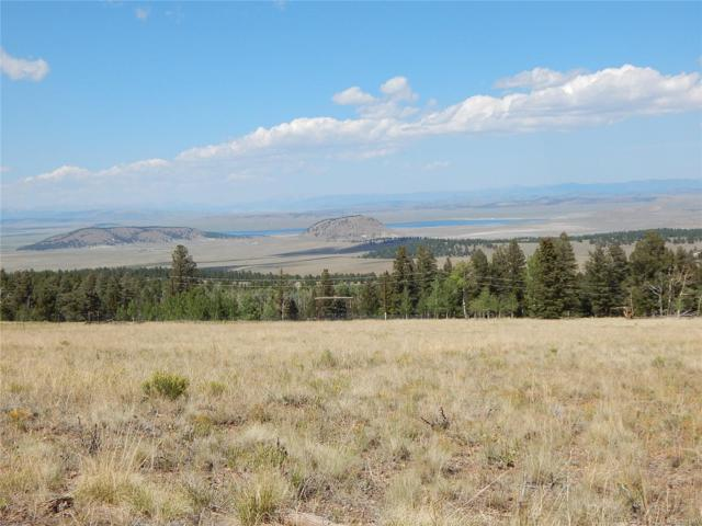 1629 Pitchfork Road, Hartsel, CO 80449 (#6058505) :: Wisdom Real Estate