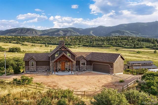 8670 S Perry Park Road, Larkspur, CO 80118 (MLS #6059112) :: 8z Real Estate