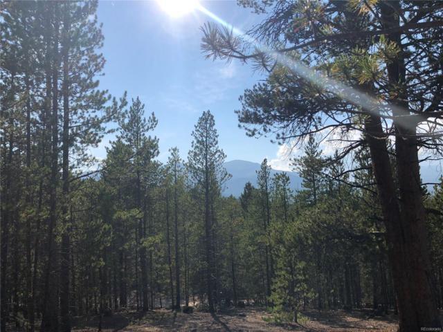 483 Mt. Massive Drive, Twin Lakes, CO 81251 (MLS #6063238) :: 8z Real Estate