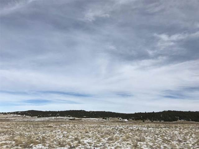 829 Co Road 310, Westcliffe, CO 81252 (#6066279) :: Real Estate Professionals