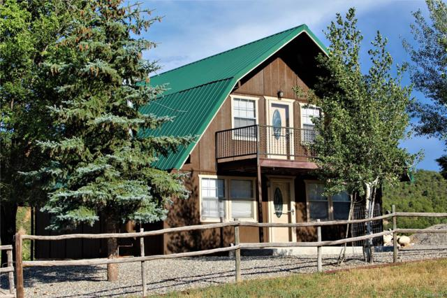 274 Cottonwood Creek Road, Coaldale, CO 81222 (MLS #6067489) :: 8z Real Estate