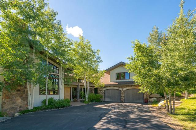 36125 Quarry Ridge Road, Steamboat Springs, CO 80487 (#6068831) :: My Home Team