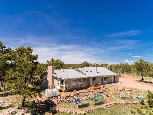 7246 Red Mountain Road, Livermore, CO 80536 (MLS #6070161) :: 8z Real Estate